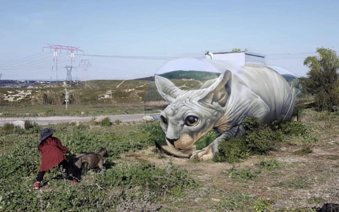 Braga Last1 mural in Southern France